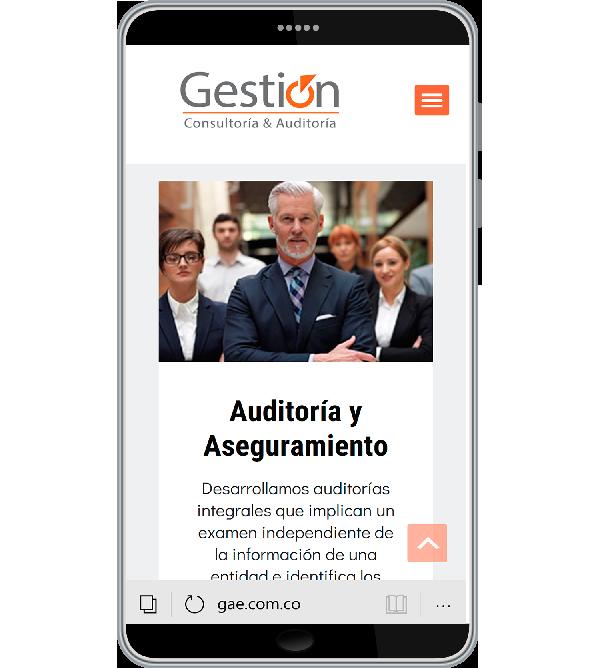 Tu Marketing Bogotá - Gestión y Auditoría Especializada home page