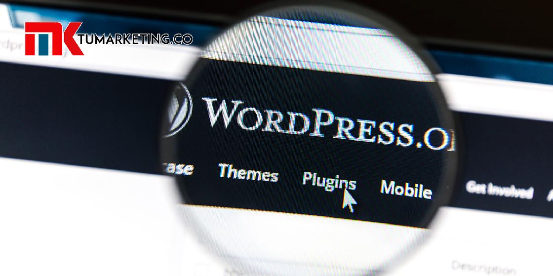 Tu Marketing Bogotá - Cómo elegir el mejor plugin para tu WordPress