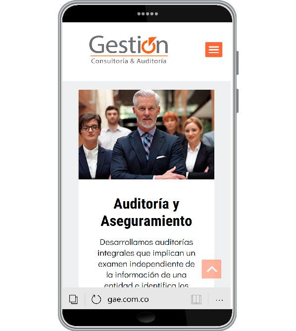 Tu Marketing Bogotá - Gestión y Auditoría Especializada Portfolio