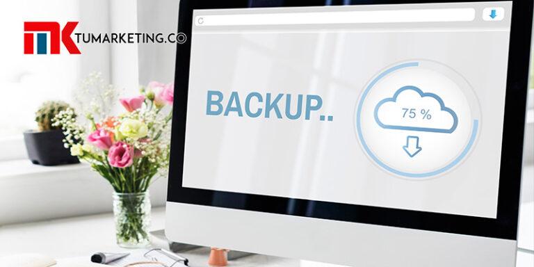 Tu Marketing Bogotá - Aprende cómo hacer un backup manual de sitio web en WordPress