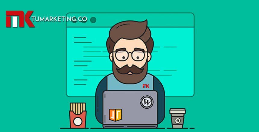 Tu Marketing Bogotá - Qué se debe actualizar primero, WordPress o los Plugins